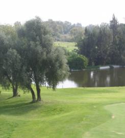 Terrain de Golf : Carthage Golf