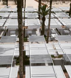 Medin Concept Architecture