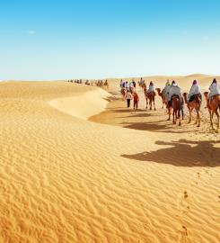 MARCOPOLO EVENTS TUNISIA